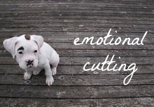 Emotional cutting: reading things that make me sad